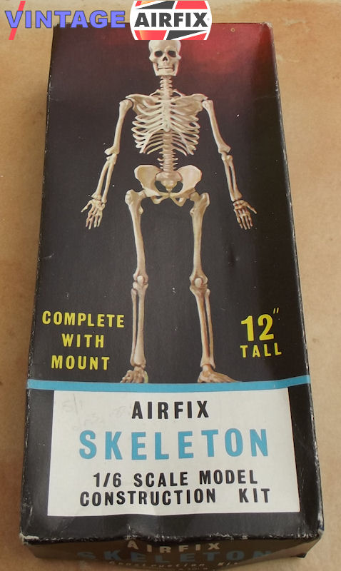 human skeleton - vintage airfix, Skeleton